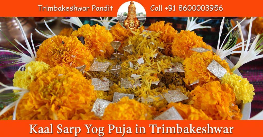 Kaal Sarp Yog Puja in Trimbakeshwar