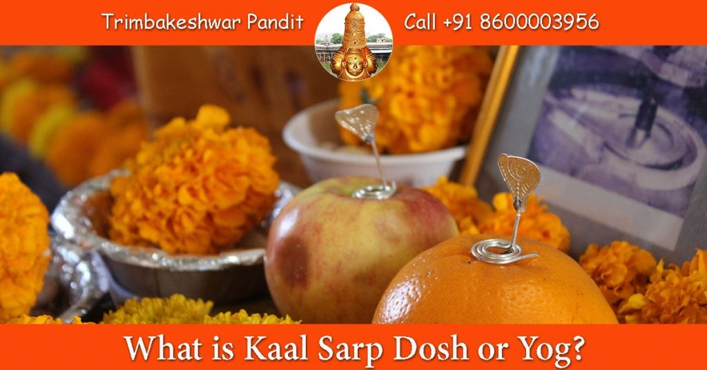 What is Kaal Sarp Dosh or Yog?